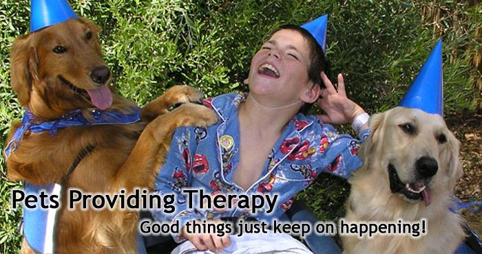 Pets Providing Therapy